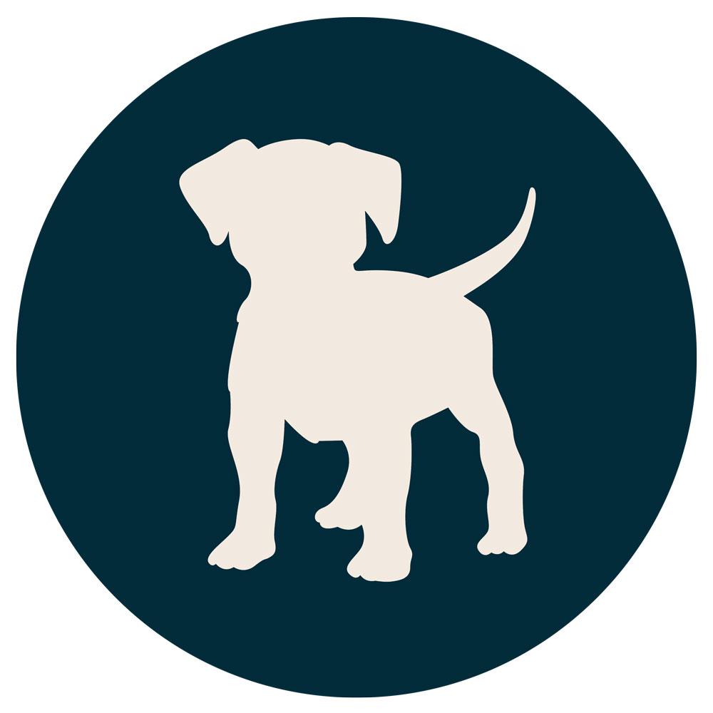 Doggos of Adelaide Logo