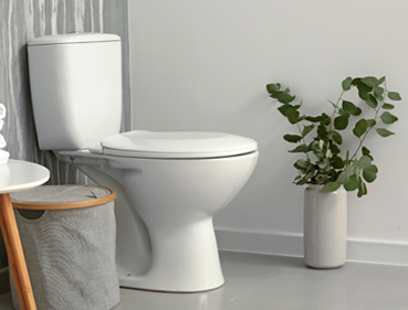 WaterSense certified high quality toilet -