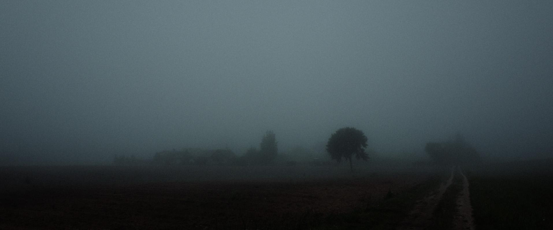 field fog by jevgenij tichonov.jpg