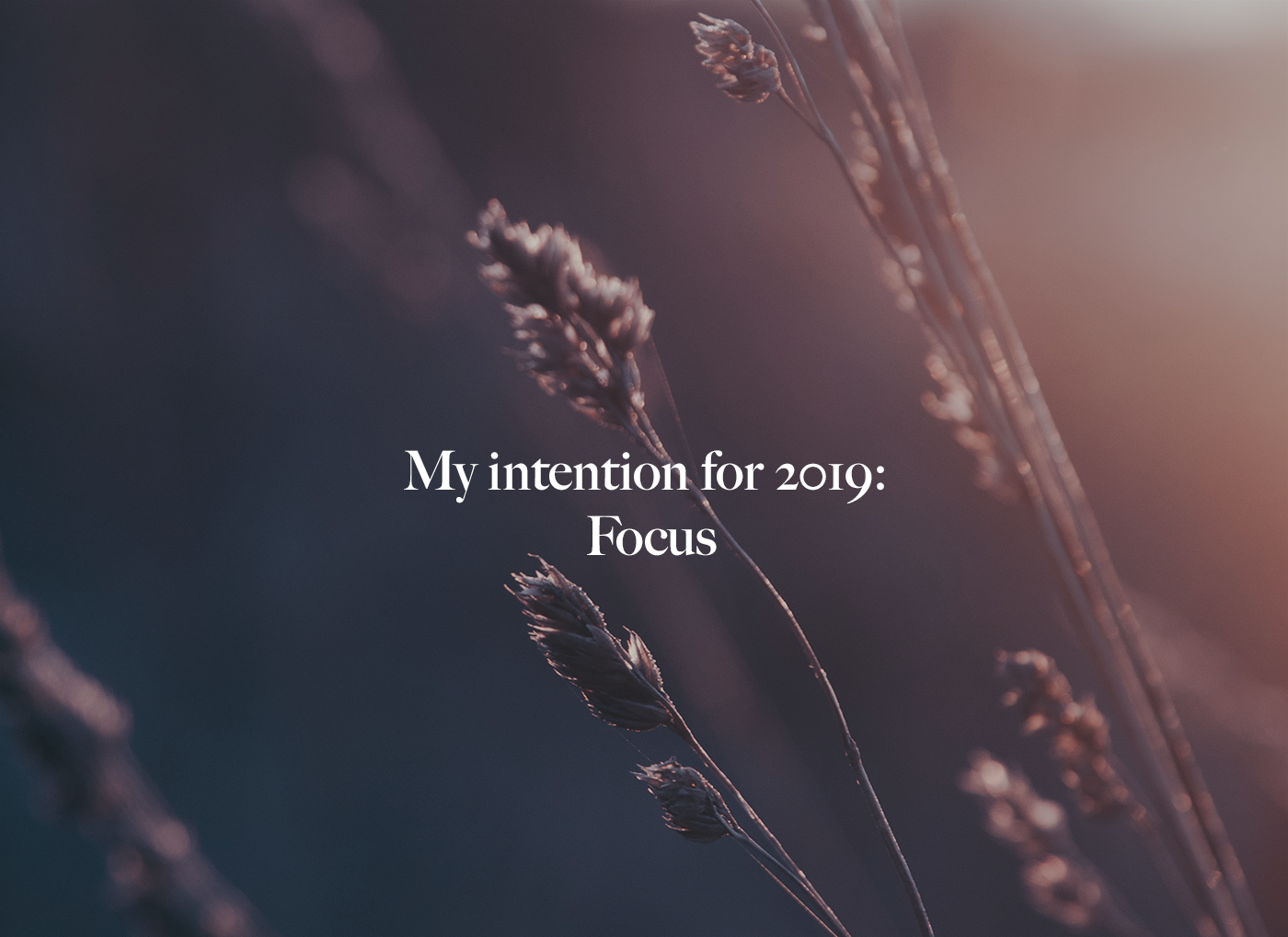 intention 2019 focus.png