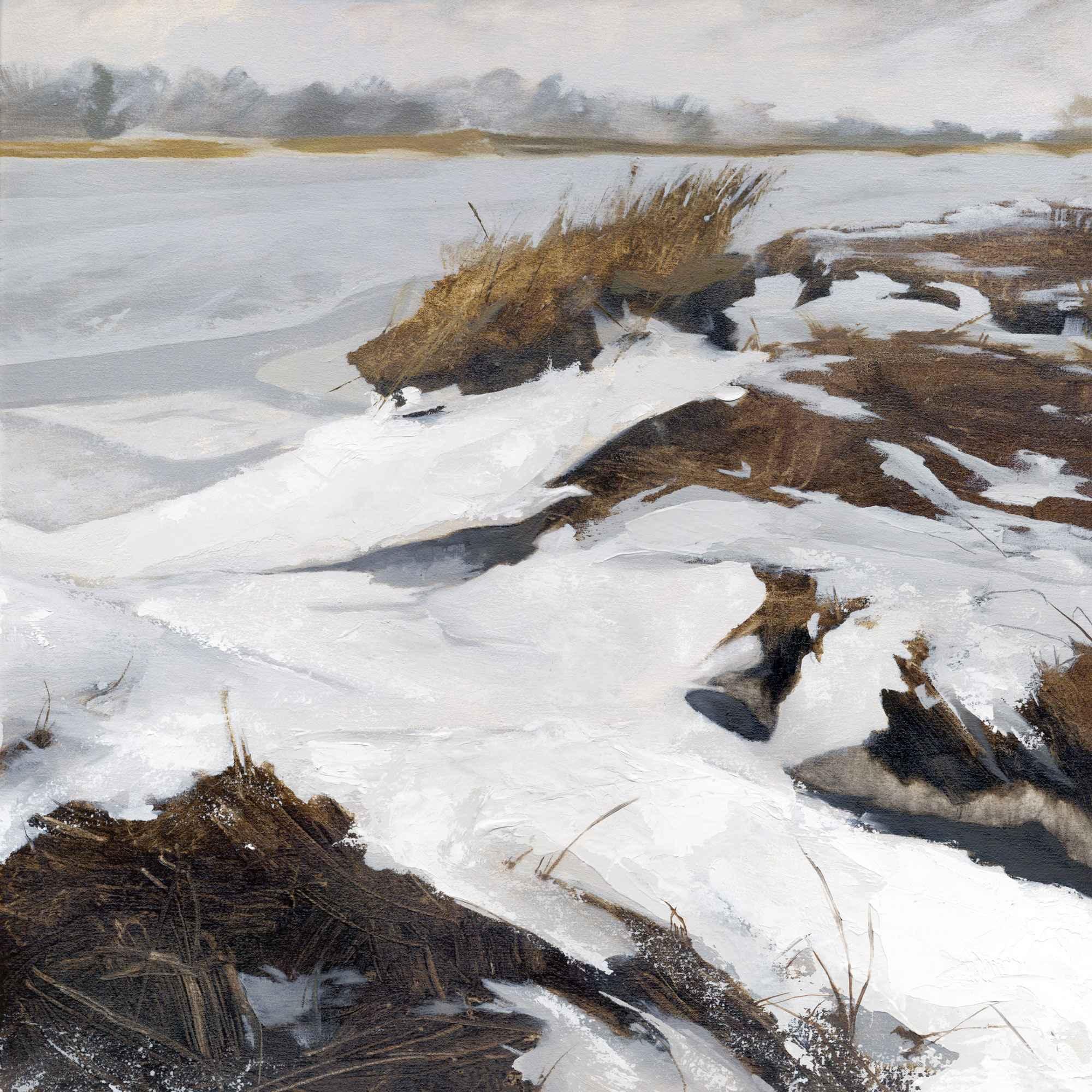 Walker T. Roman_artifactsmv_Field Gallery_marthasvineyard_tidal marsh.jpg