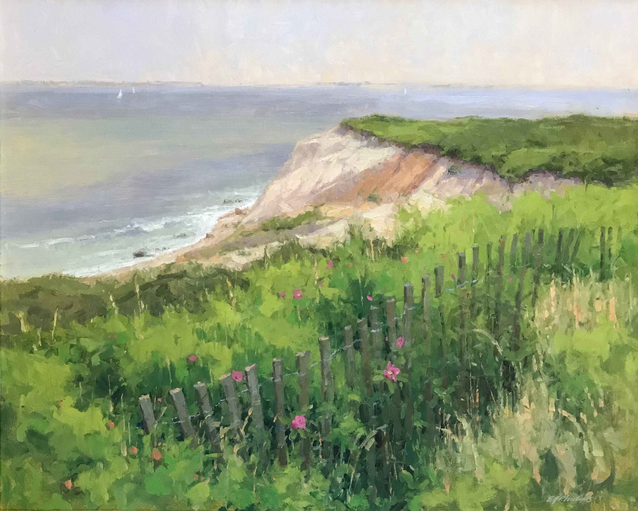 Elise Phillips_artifactsmv_North Water Gallery_marthas vineyard_view from above.jpg