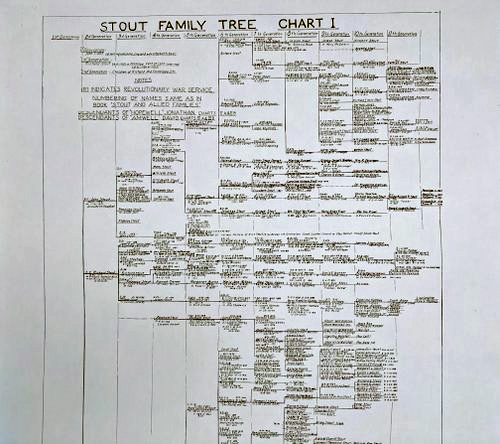 Stout Family Tree   $3