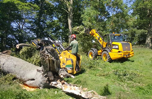 Our #Vermeer #skidsteer wants to be just like its dad when it grows up! #JCB #estatework