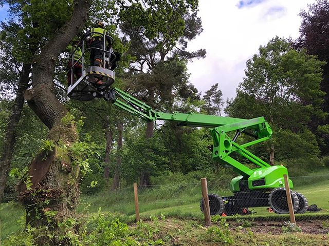 Hi @arboricultural_association 👋, say hello to Paul Smith from us!