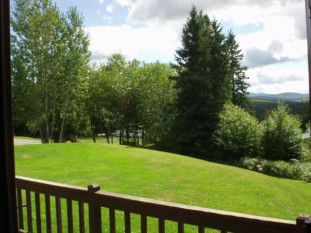 Fantastic Front Porch View