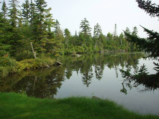 Serenity On Back Lake