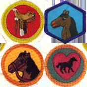 badges_horsemanship.png