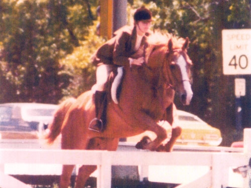 Owner Sharon Casares rides Crusader at a horse show in 1973