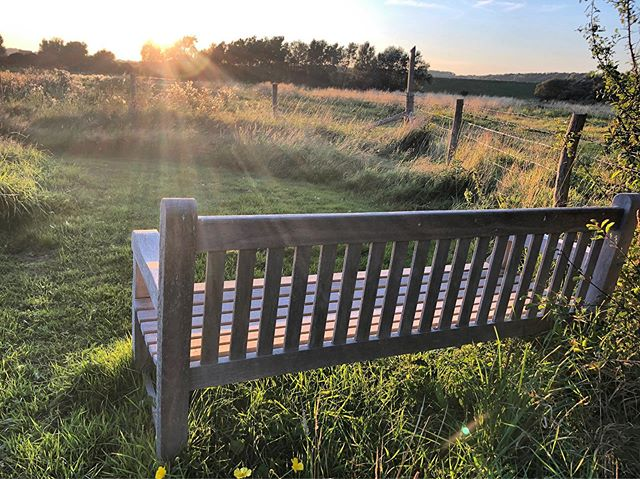 This is our favourite bench (we call it G&T bench). You're all very welcome to come and sit on it. No appointments necessary.
