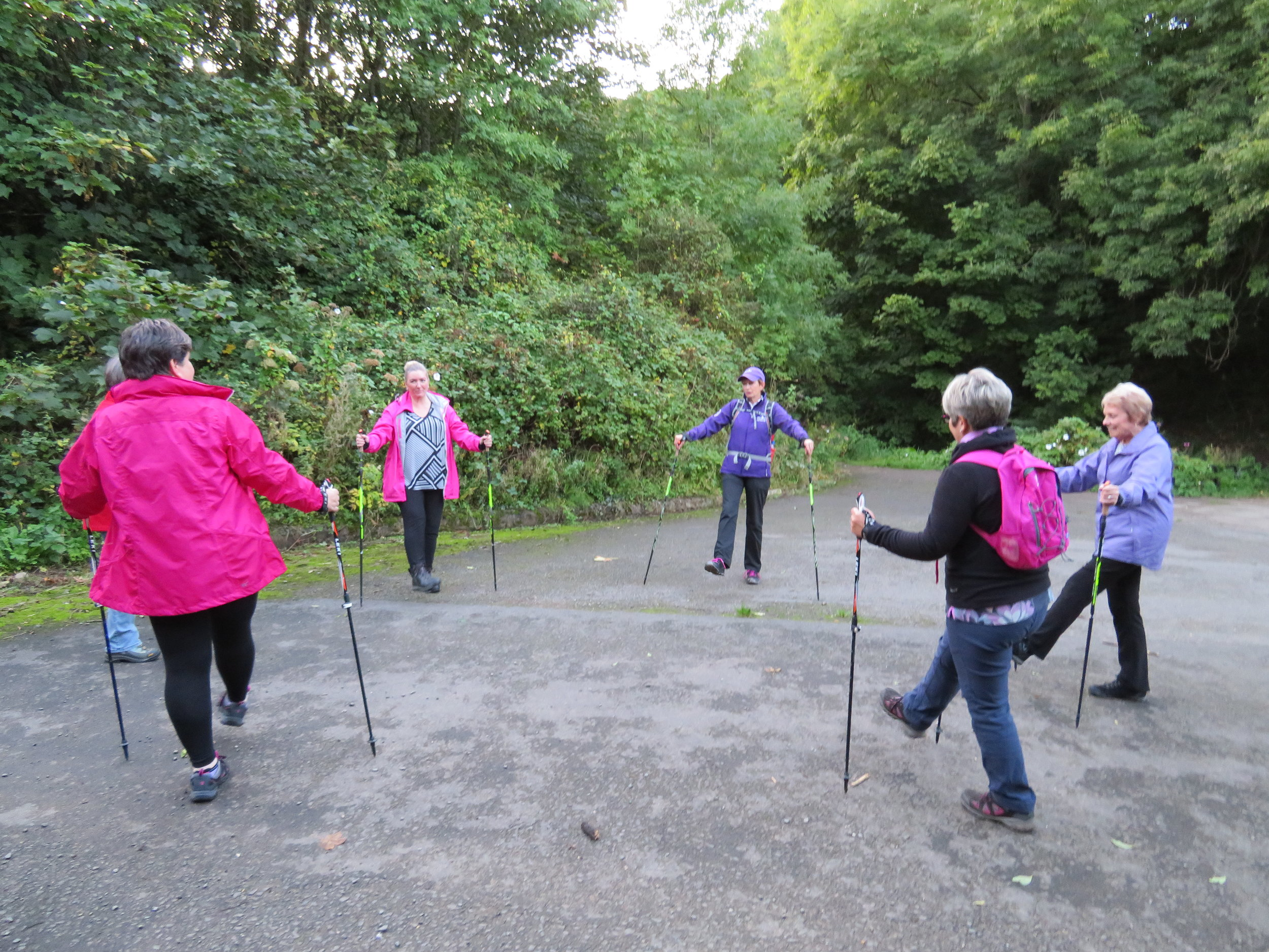 Five ladies wearing pink and purple jackets in a circle with Nordic Walking poles taking part in a workout on tarmac overlooking a green forest