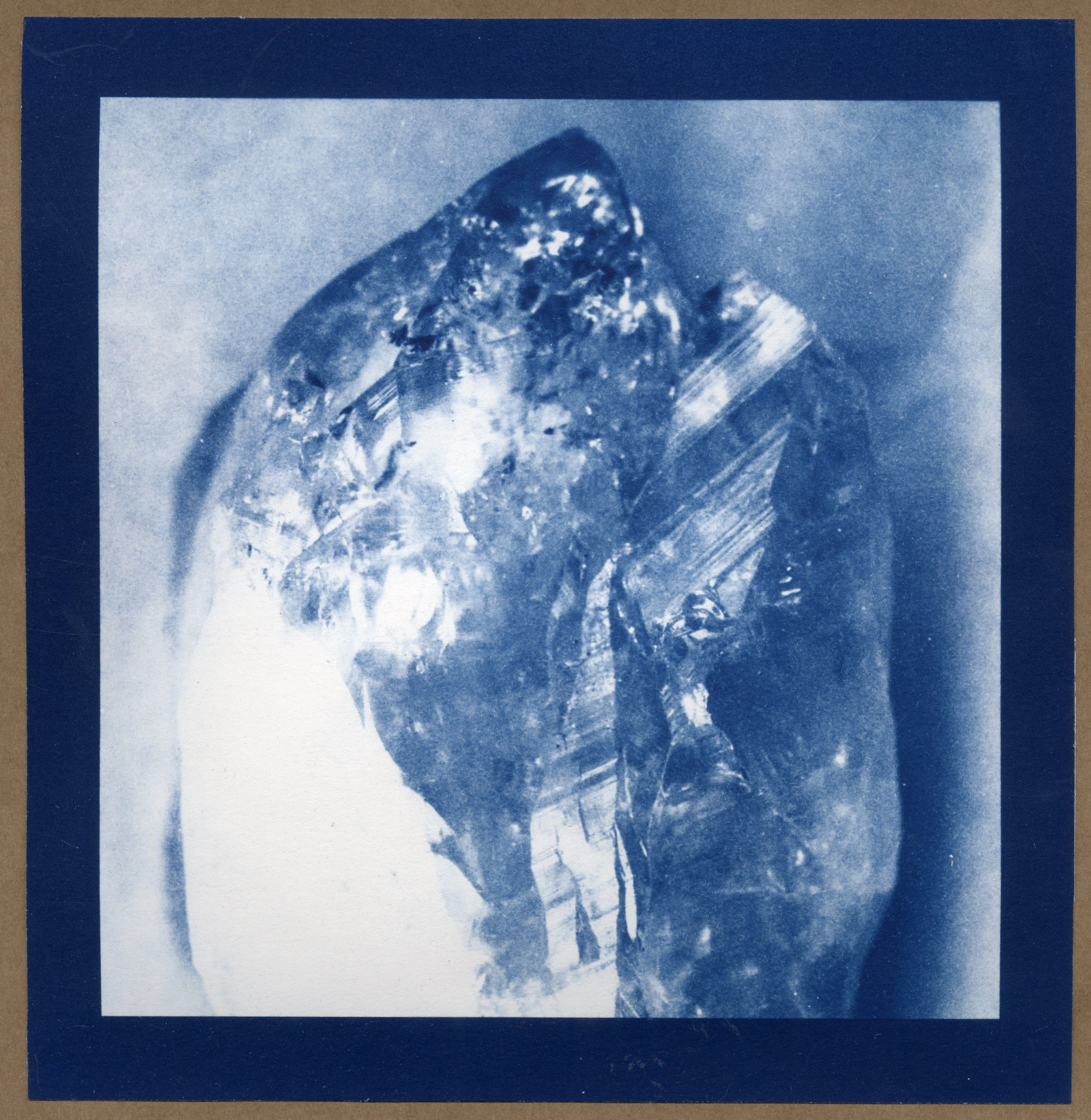 Cyanotypes are a form of photography that combines energy and art, using sunlight to create an image on the page.