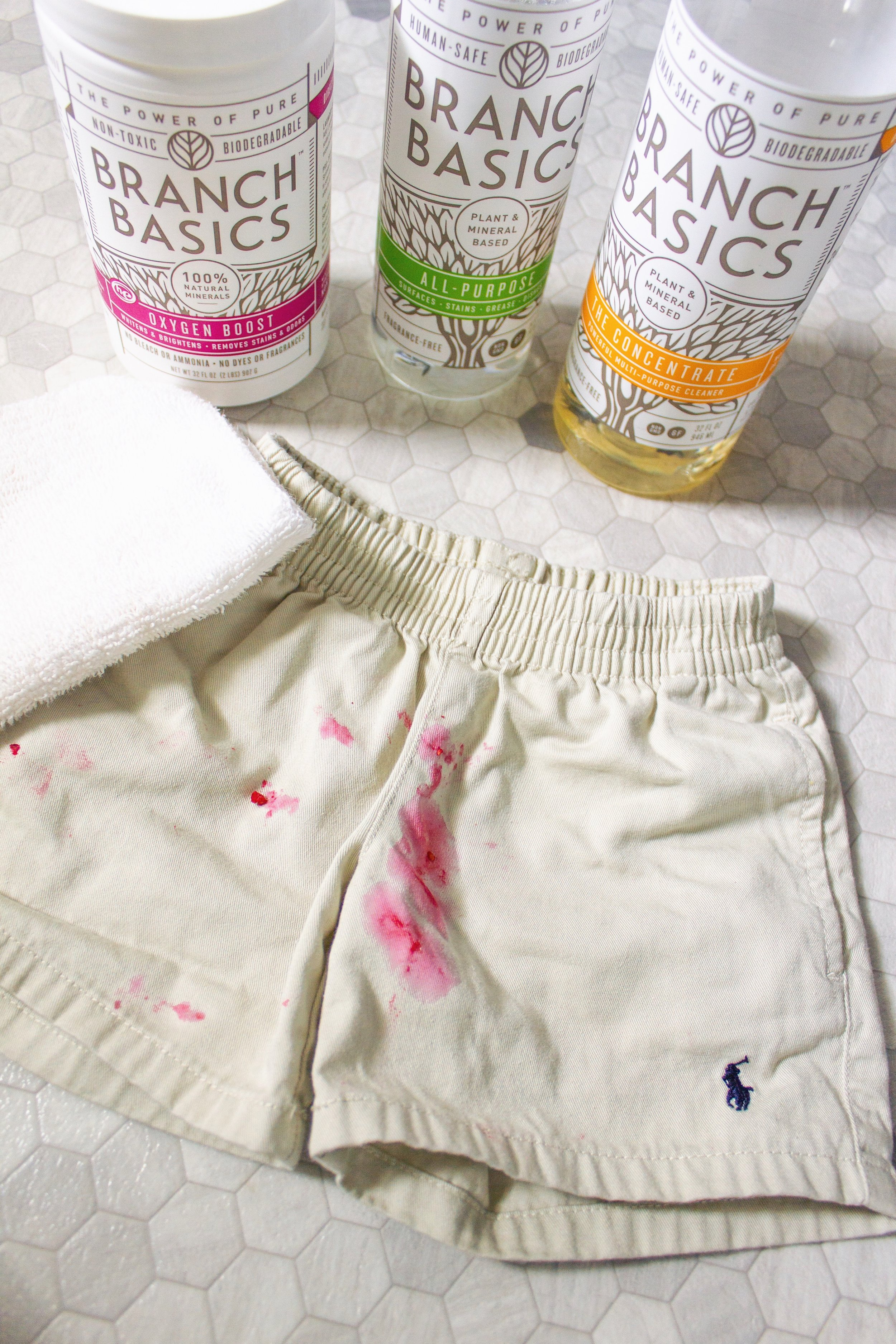 BEFORE… - Bright red raspberry stains all over his adorable khaki shorts.