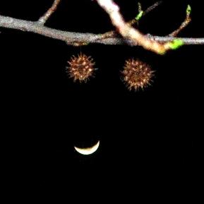 Moon Smiley, 3 - Version 2.jpg