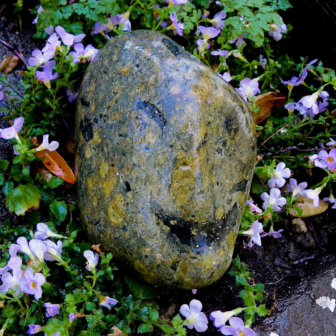 Rock Smiley, 7.jpg