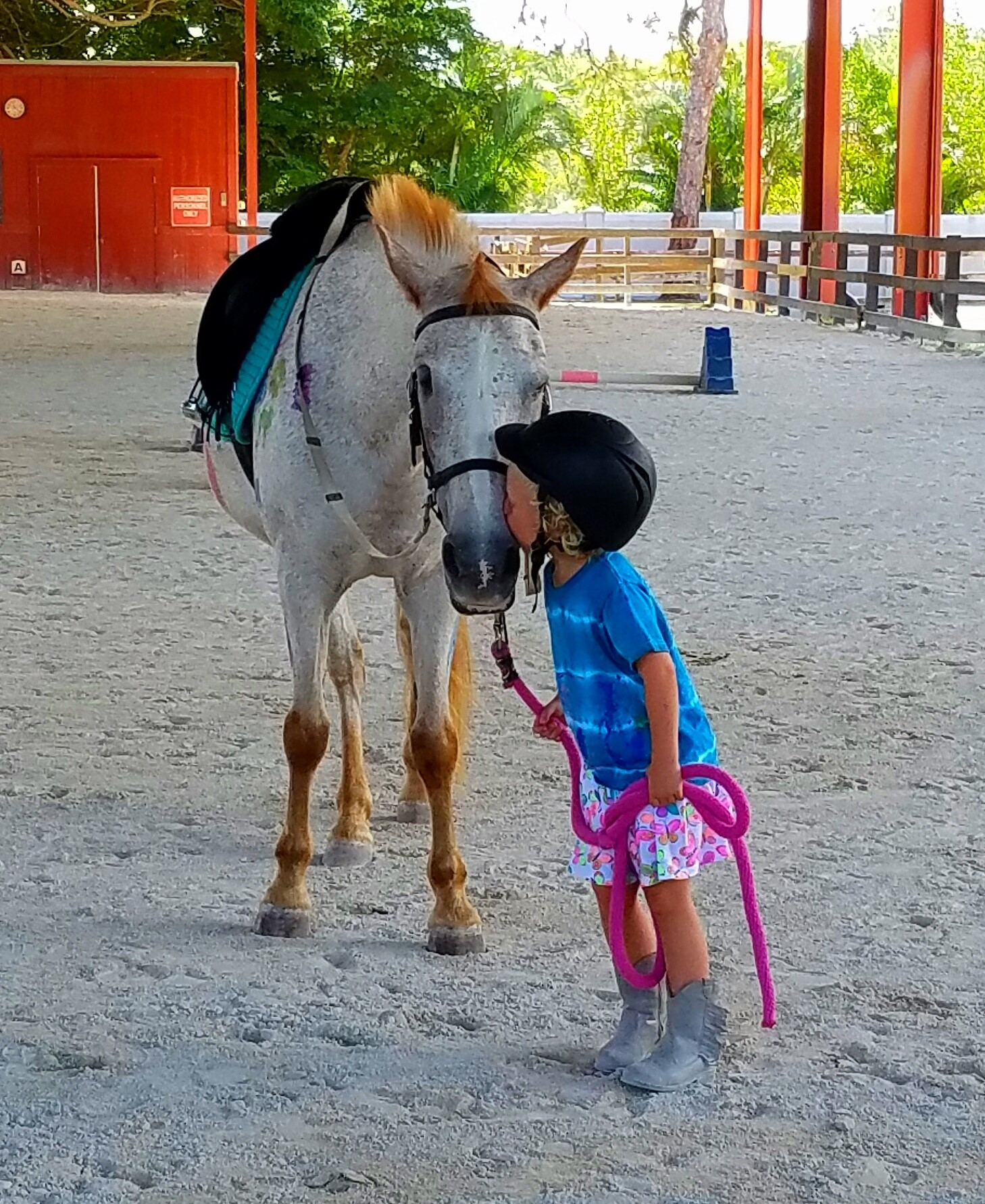 The Community Foundation of Collier County is helping tackle mental health care by funding initiatives such as the Naples Therapeutic Riding Center.