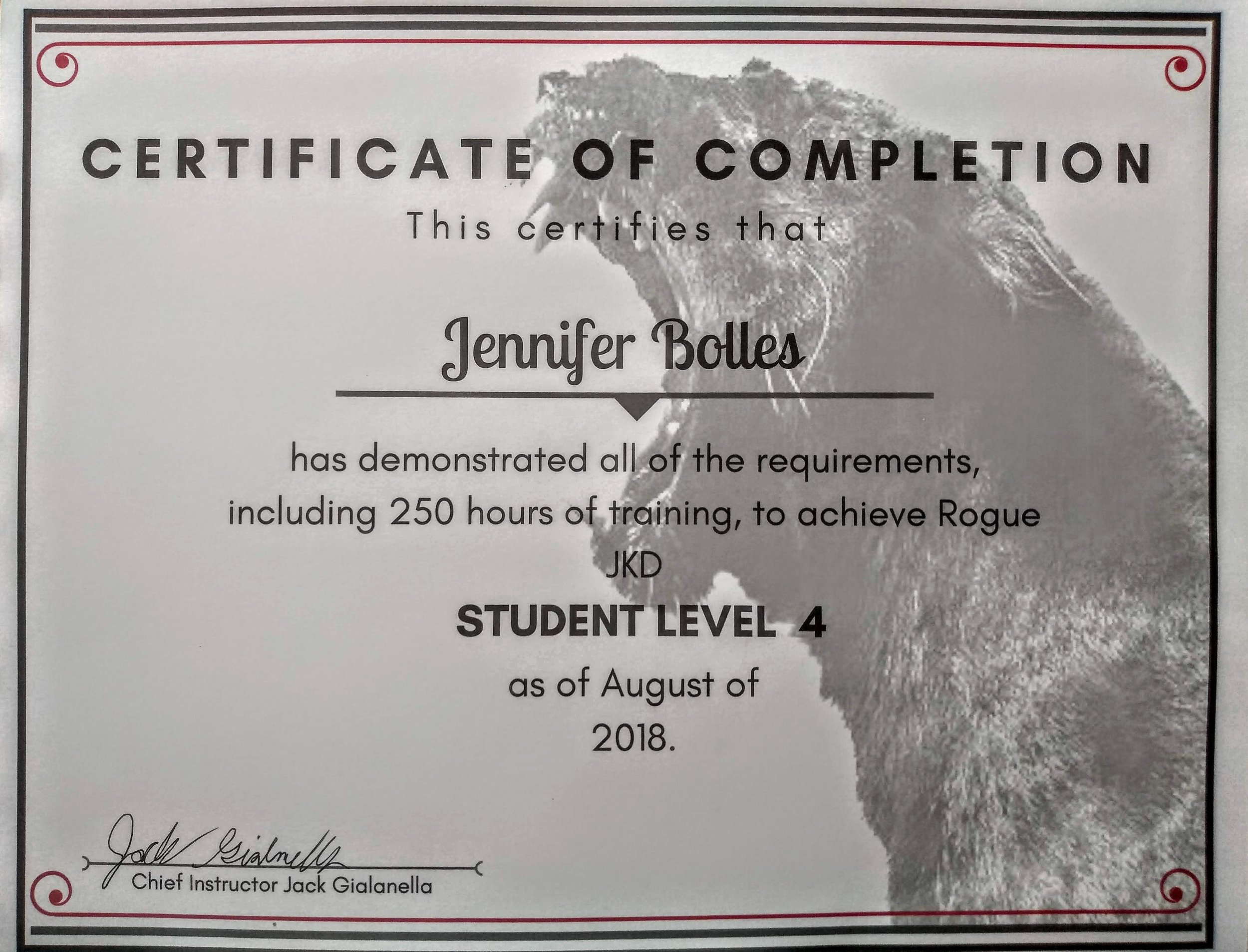 Rogue JKD, Filipino Martial Arts, and Self-Defense Student Level 4 - 2018