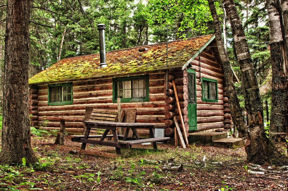 log-cabin-nature.jpg