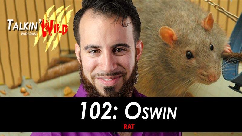 102_Oswin_the_Rat.jpg
