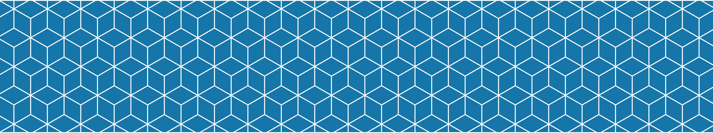 coa-pattern_01 copy@2x.jpg