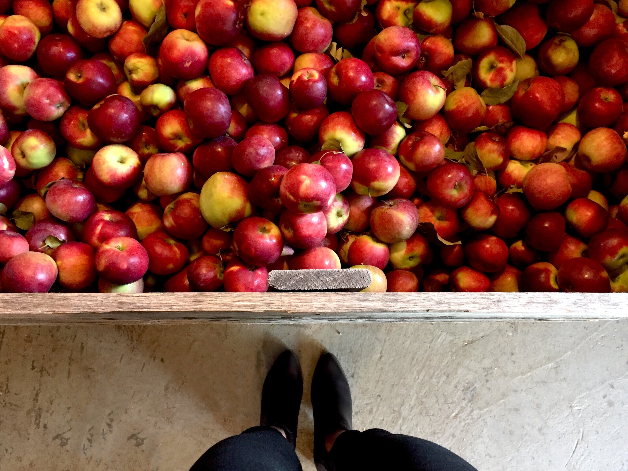 apple feet.jpg
