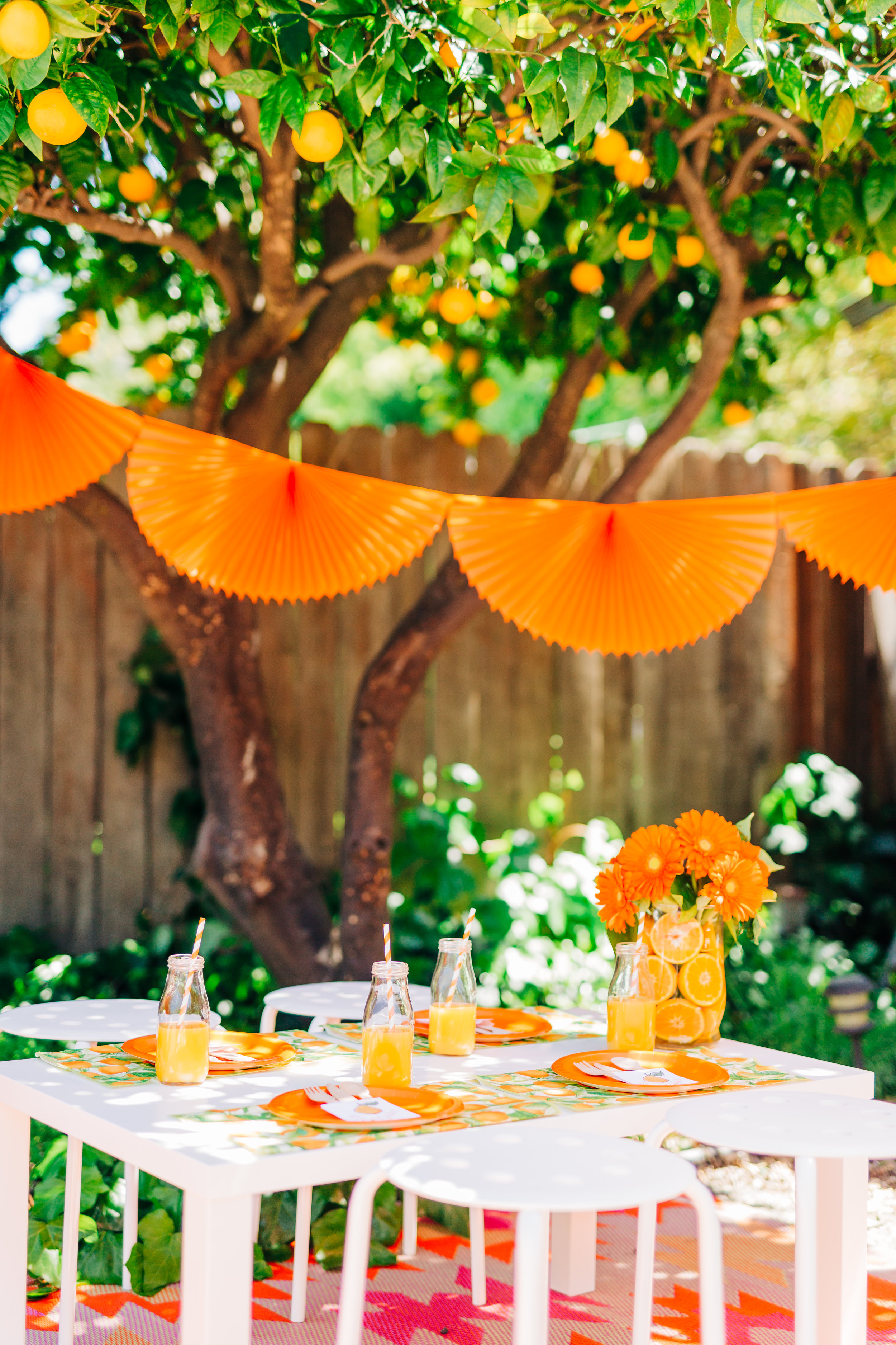 orange picking party with citrus accents and children's table 11.jpg