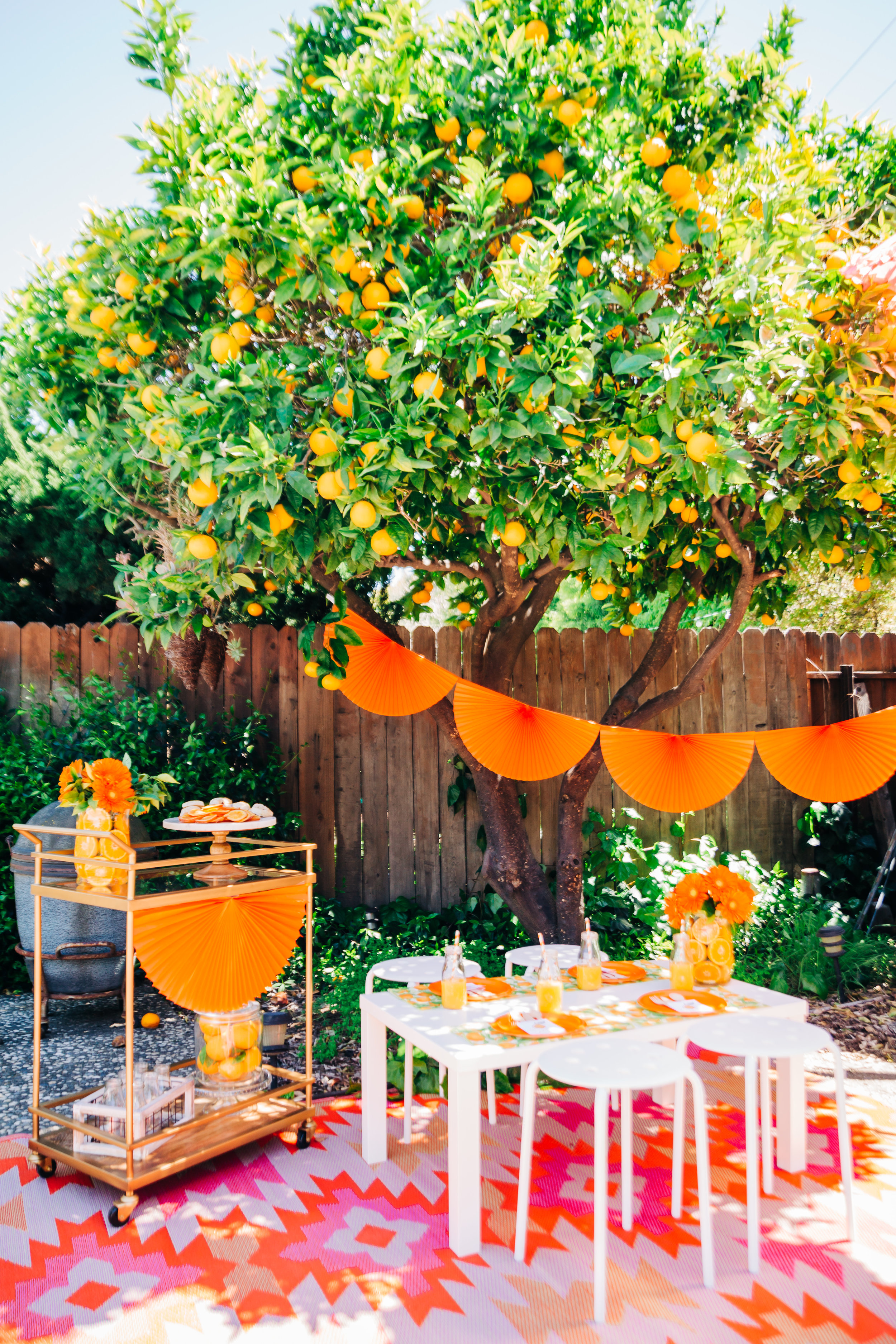 orange picking party with citrus accents and children's table 3.jpg