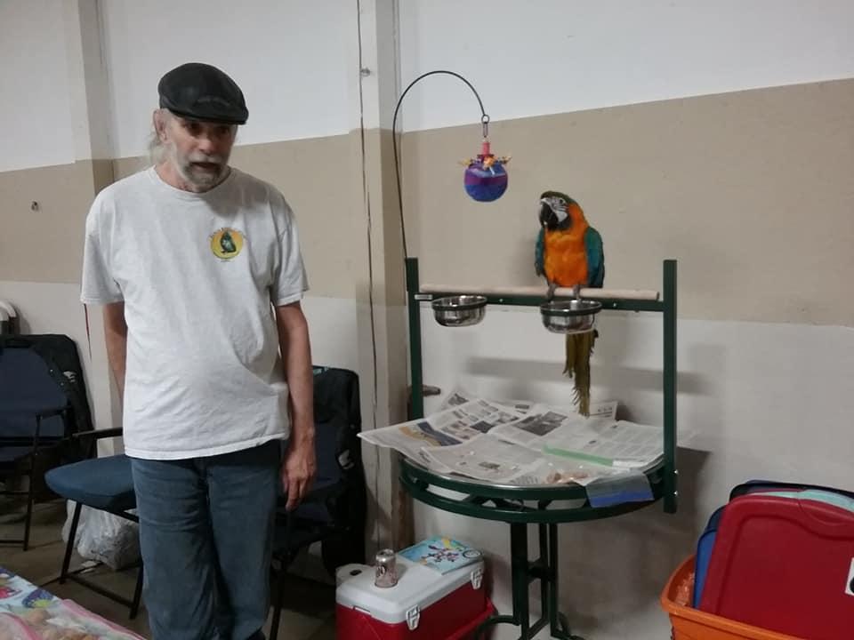 maebs bird fair 2018 Moseley and macaw.jpg