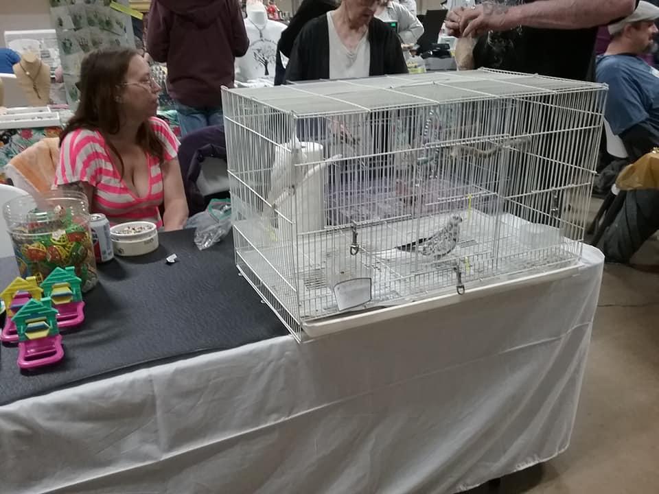 maebs bird fair 2018 vendor.jpg