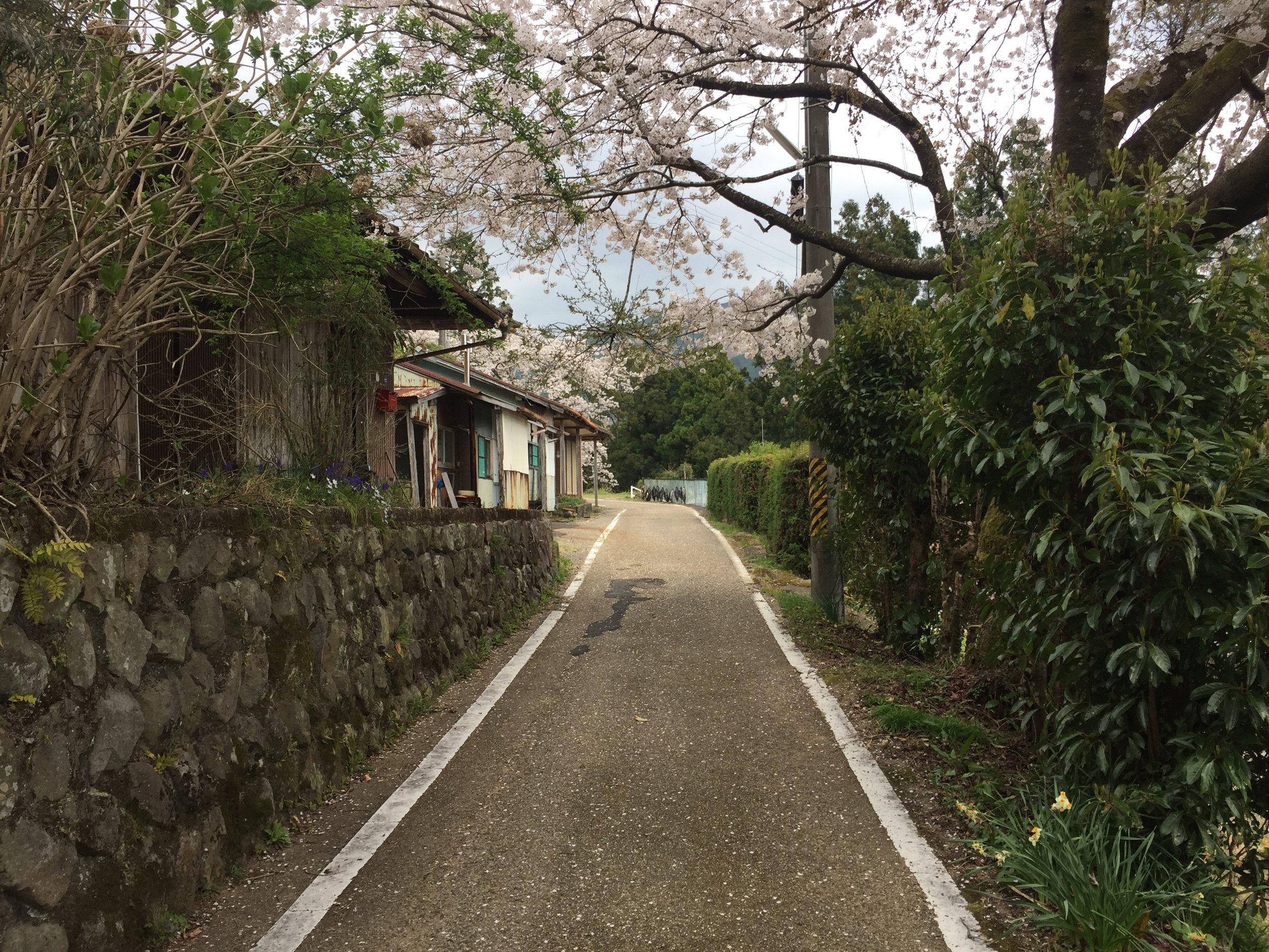 Kumano Gallery 9.JPG