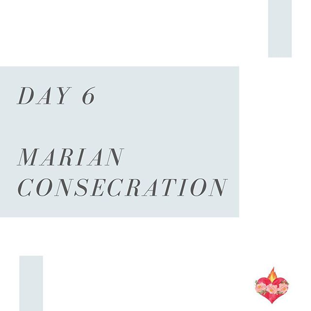 Day 6! Come Holy Spirit, fill the hearts of your faithful and kindle in them the fire of your love.  V. Send forth your Spirit, and they shall be created. R. And You shall renew the face of the earth. /// #thedaughtersofmary #marianconsecration #catholic #mary #ourlady #virginmary #hailmary #blessedmother #prayforus #CatholicWomen #rosary  #praytherosary #prayforussinners #amen  #Turlock #Denair #Hughson #Merced #merced #modesto #catholicmom #catholicfamily #catholiclife #modesto #catholicfaith #catholicwomen #catholicwoman #romancatholic #catholicism #newevangelization