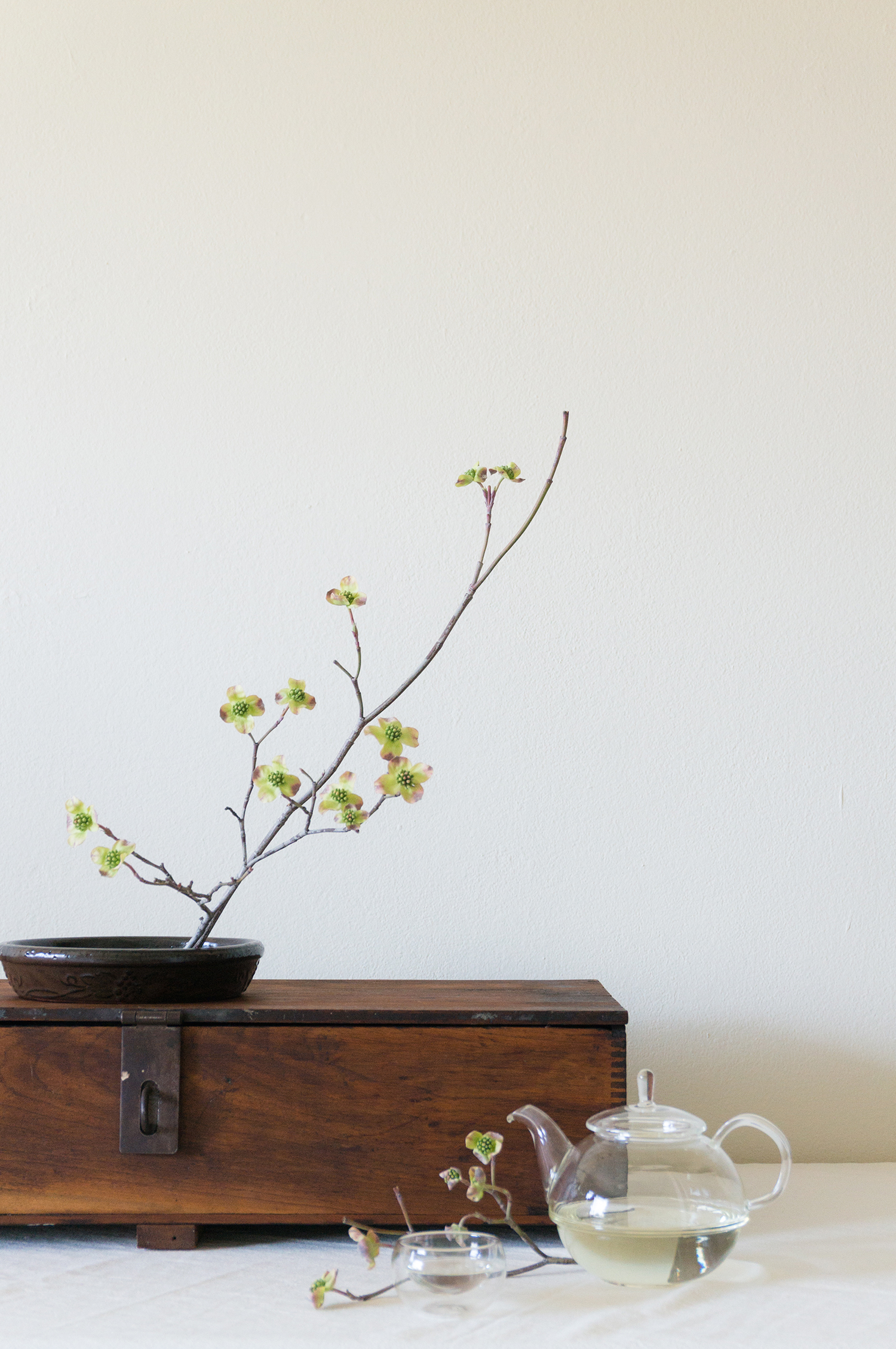 - bough + twig is a floral styling studio founded by Clair Han and Mido Lee. We design florals for spaces, weddings, and events in the San Francisco Bay Area. Our design philosophy is based on three core values:Embrace natureNature is perfect yet imperfect, symmetrical yet asymmetrical, structured yet organic. The duality of nature inspires us and draws our respect.SimplicityThe world is filled with noise and drains our senses. We strive to reduce the noise and invoke peace and harmony.Connectionbough + twig was born from the idea of a tree branch reaching out. By infusing warmth in all our work, we seek to touch the viewer and invoke emotion and thought.