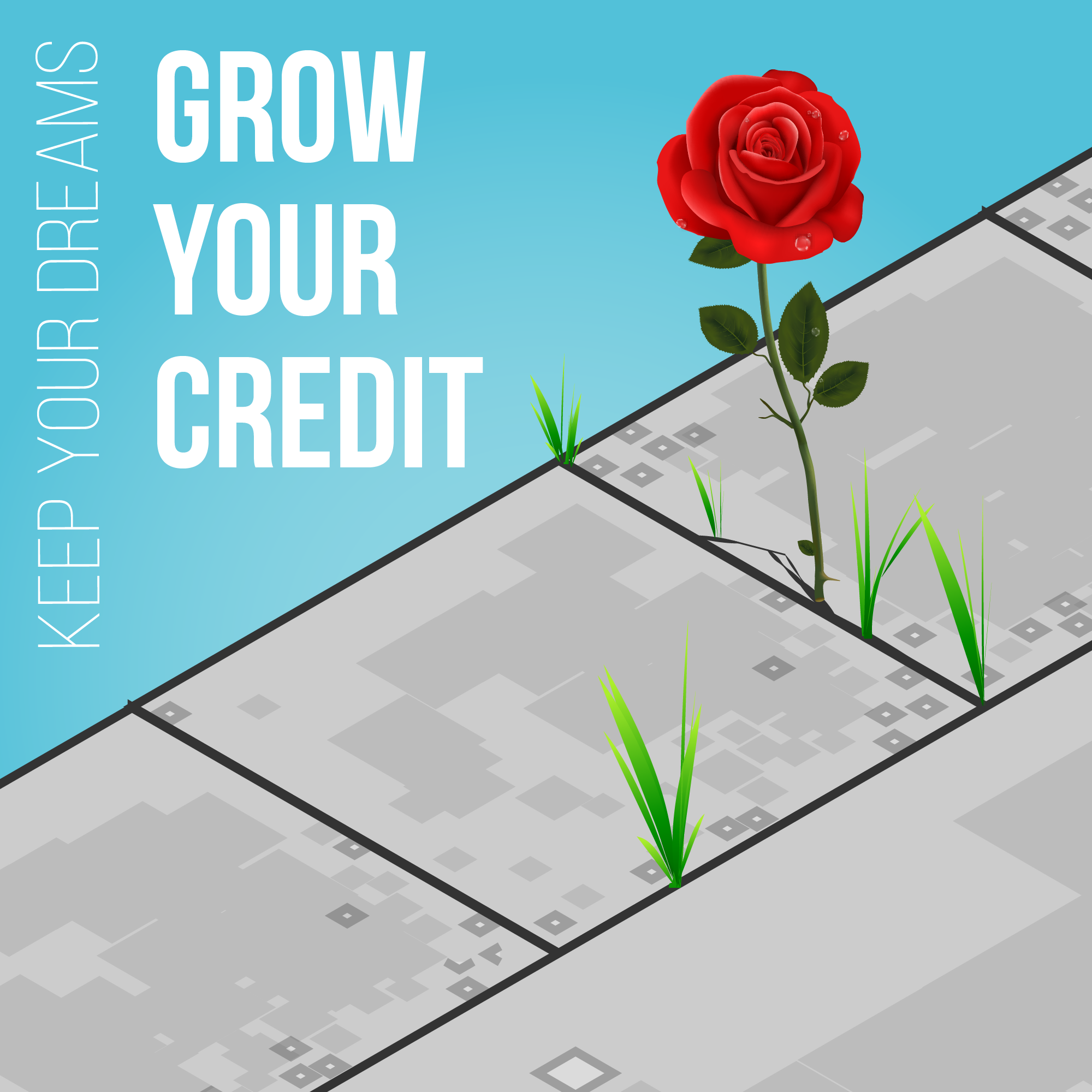 Grow Your Credit | Resources | Nu Level Equity | Mortgage Services