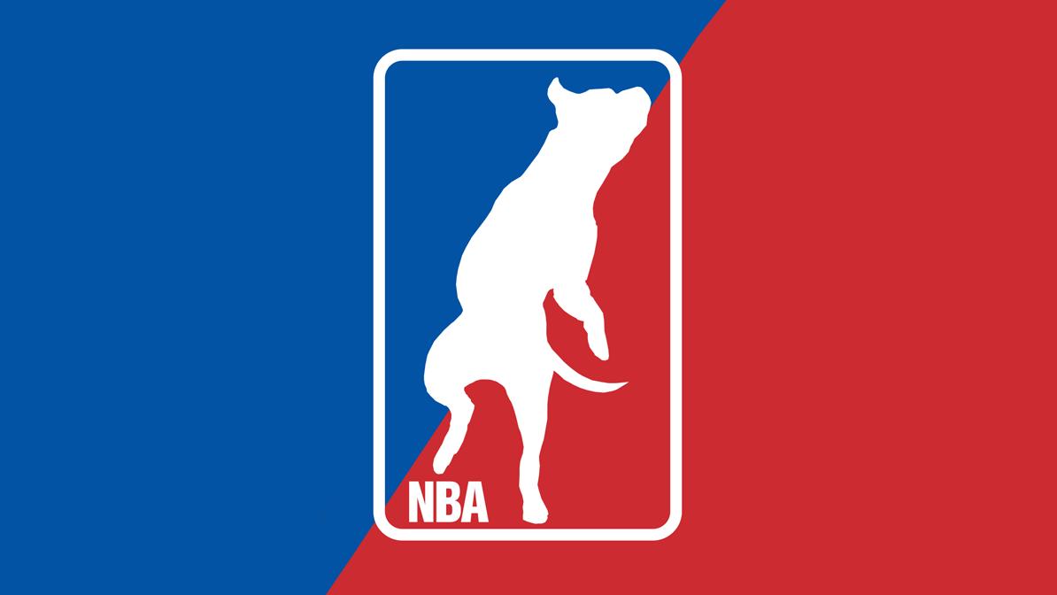 NBA Rescue Logo large OG.png