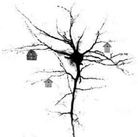 humor_Arborization_by_Jane-P.-Sheldon.jpg