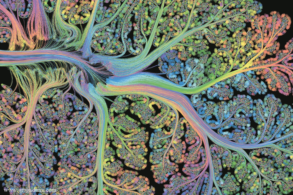 connectome_Cerebellar-Folia_by_Greg-Dunn.jpg