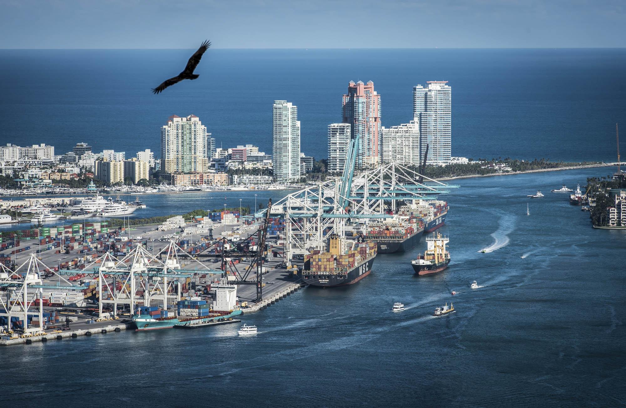 professional photographer Miami Florida USA 037.JPG