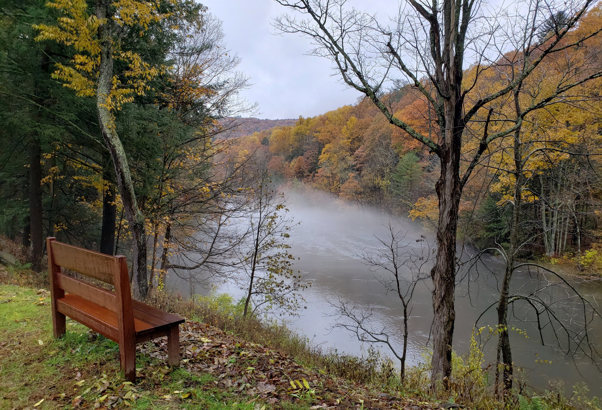 River bench