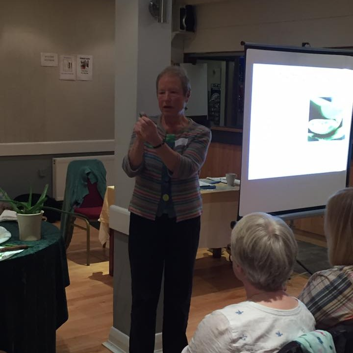 April 2017:  Dorothy gave us a talk on Aloe Vera.