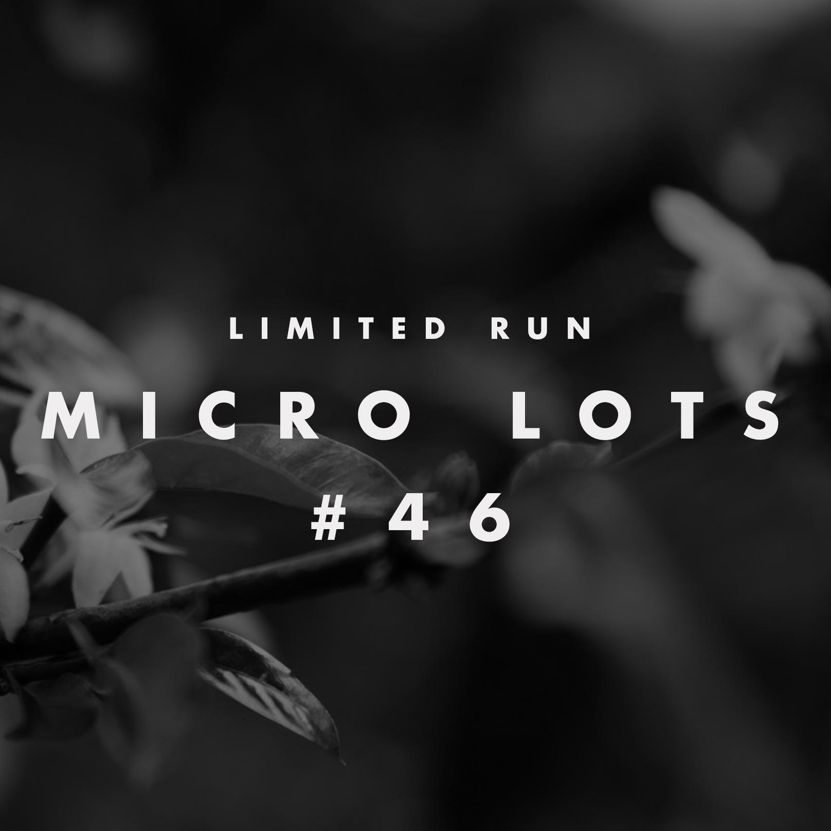 microlot4.jpg