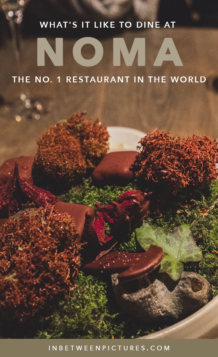 NOMA - What's It Like To Dine At The No. 1 Restaurant In The World