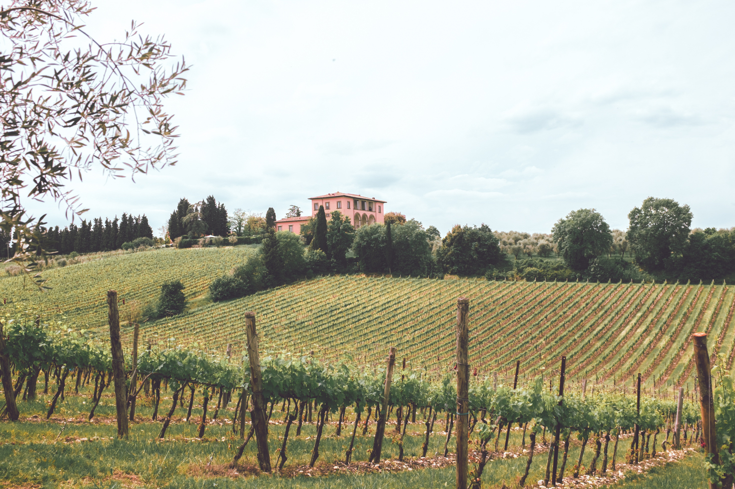 Villa Mangiacane - Chianti Luxury Villa
