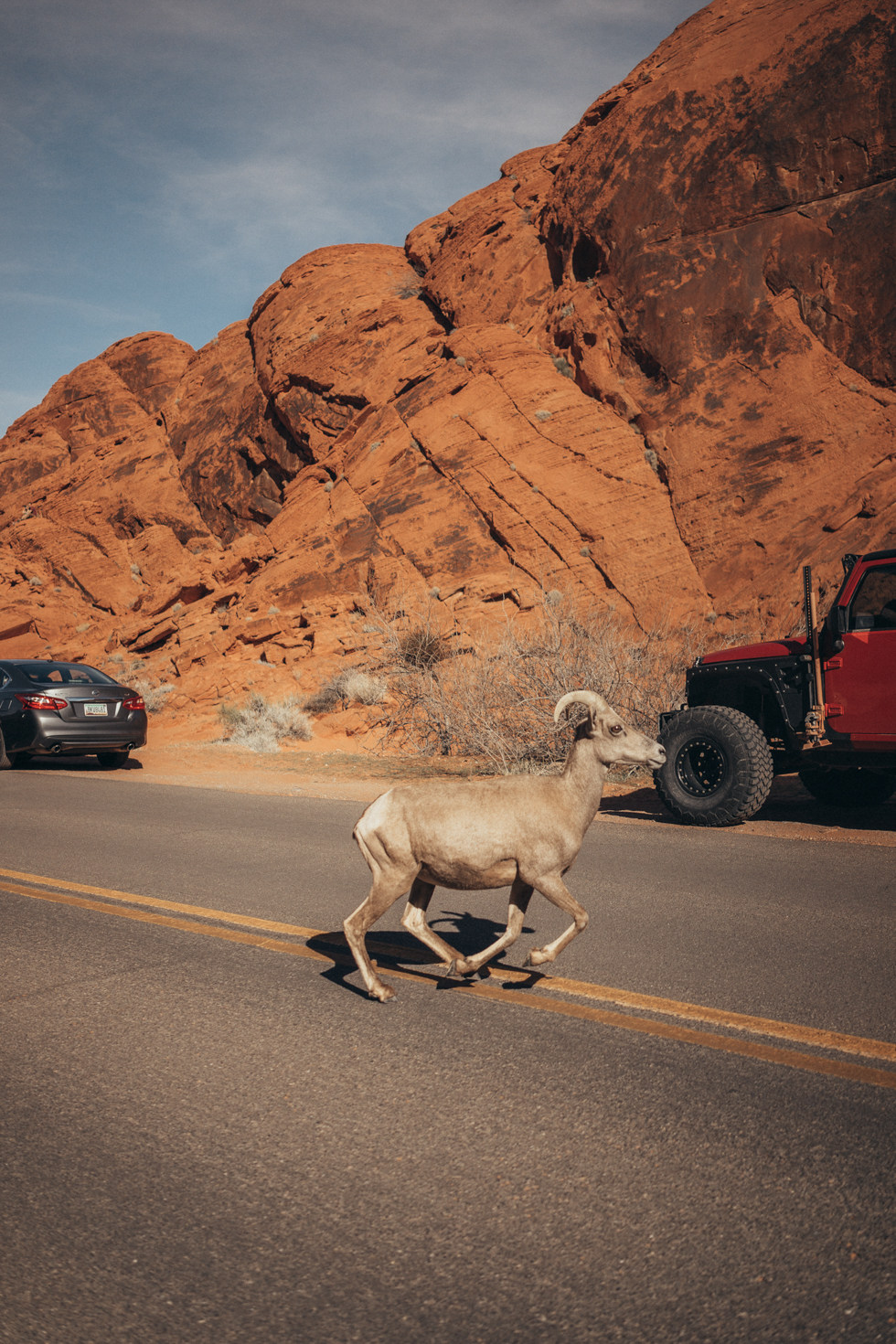 Valley of Fire State Park - Southwest Road Trip #Nevada #USA #RoadTrip