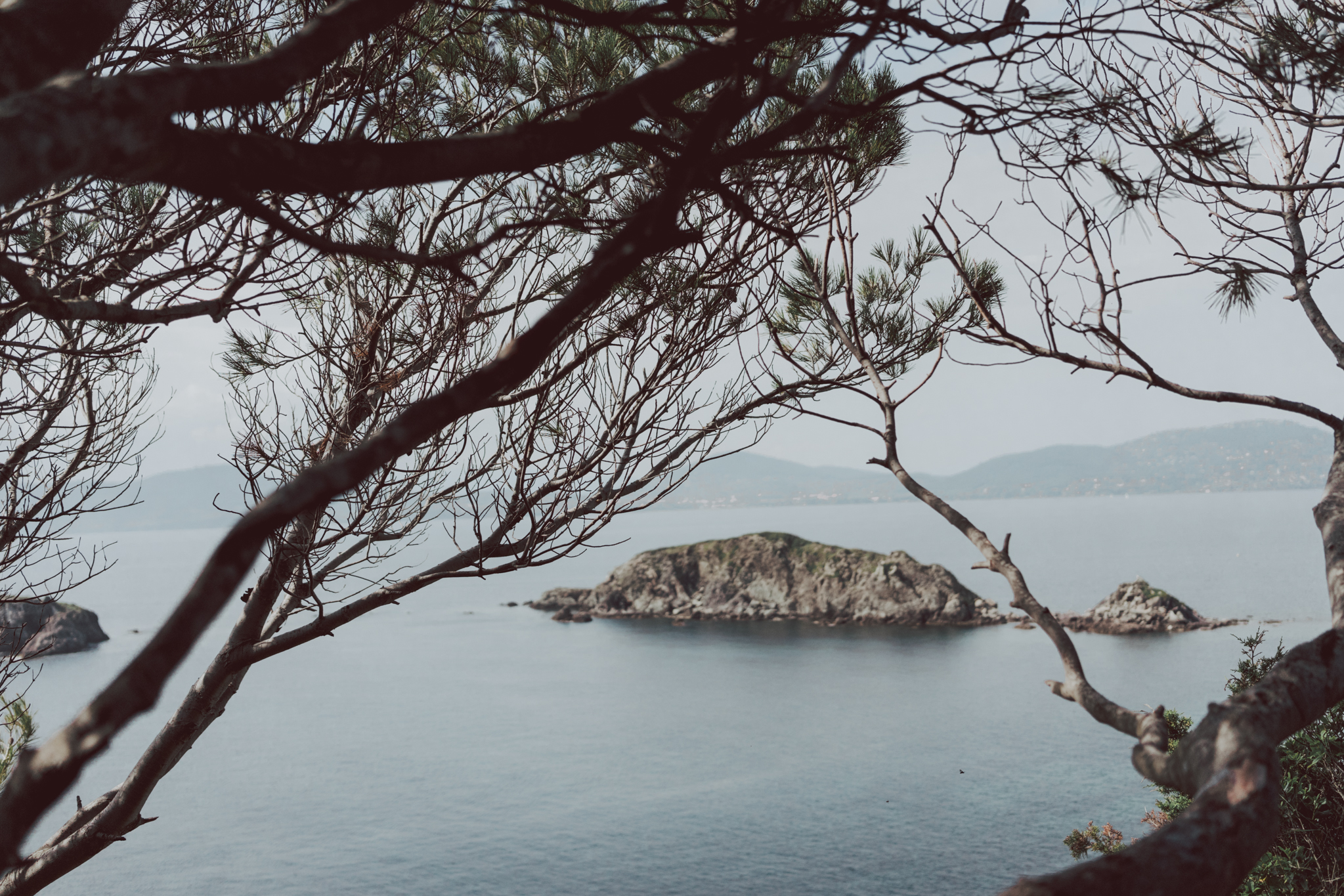 Hiking Trail Giens Things to do in Hyeres South of France - French Rivera #France #Provence #FrenchRivera #CotedAzur