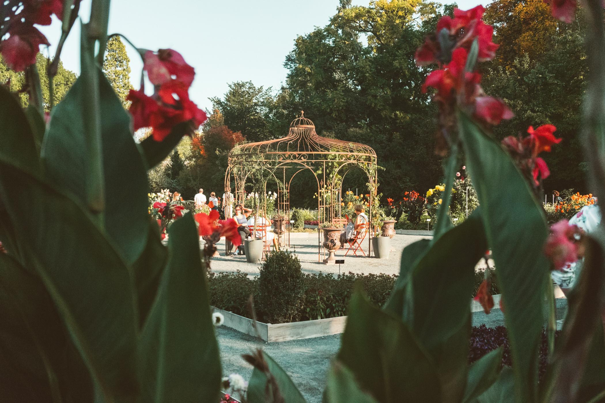 8 things to do in Lyon France - Parc De la tete D'or