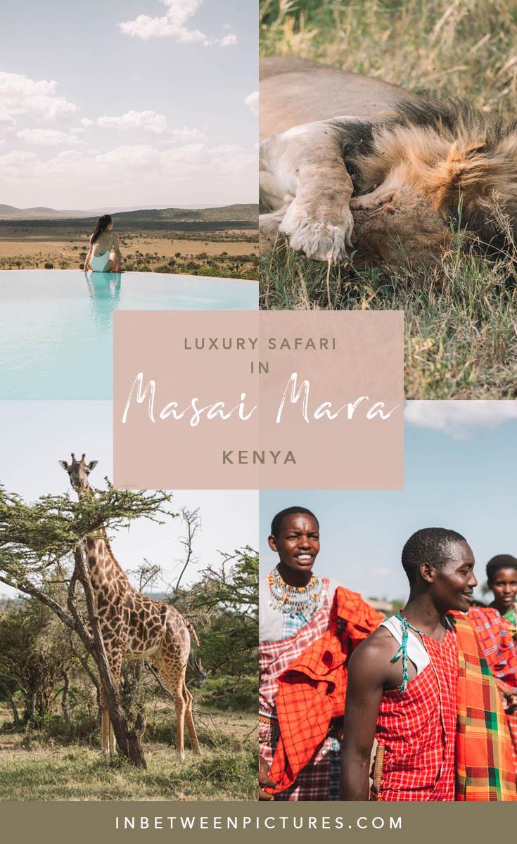 Kenya wildlife safari Masai Mara at a luxury Safari lodge #Safari #Africa #Kenya