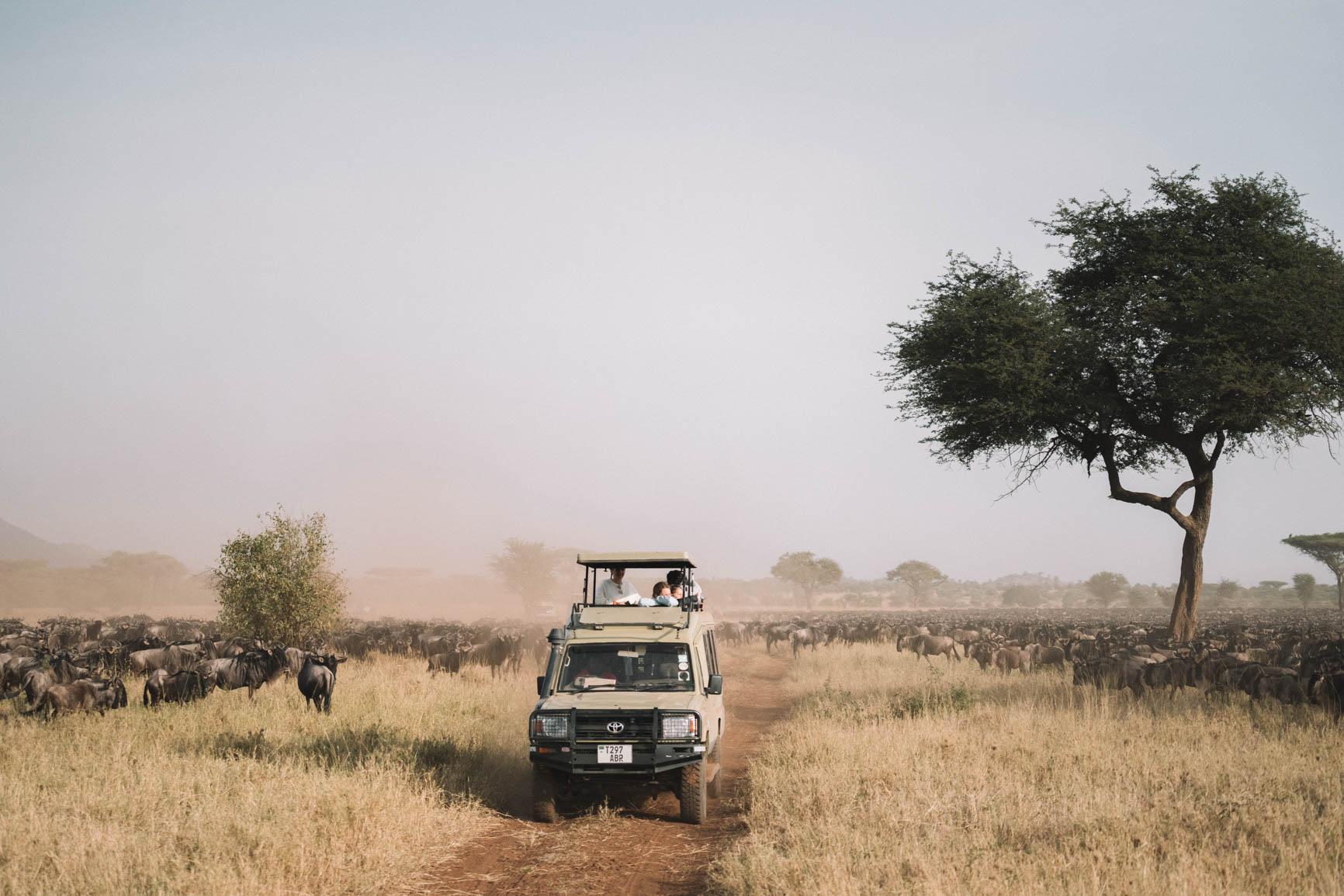 Kenya and Tanzania Safari Tips, FAQ, and recommendations