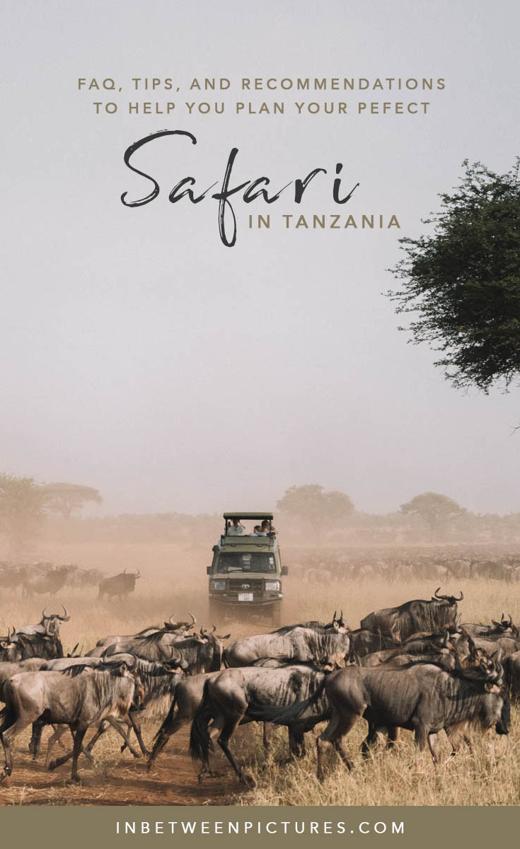 Everything you need to know before your Safari in Tanzania - Tips, Recommendations, FAQ and guide to plan your wild life safari in Africa #Tanzania #Africa #Safari - Serengeti National Park Adventures