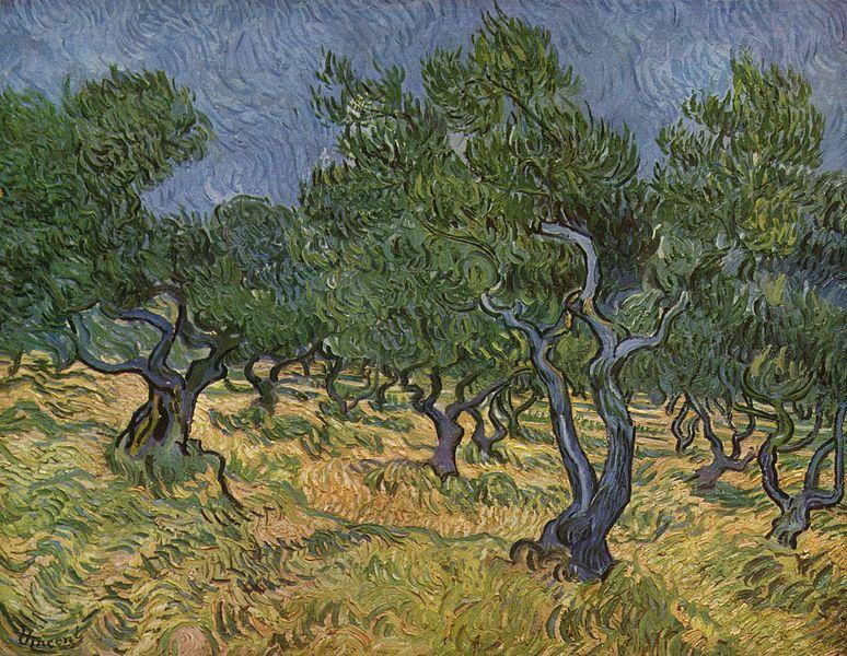 Olive Orchard, Vincent Van Gogh, 1889,Kröller-Müller Museum, Otterlo