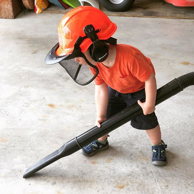 Henry takes his garage vacuuming very seriously.